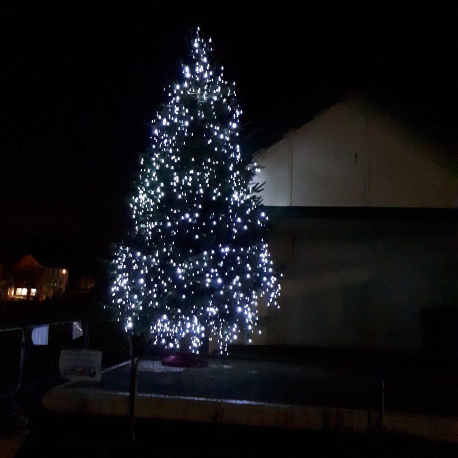 Christmas Tree om Lawn